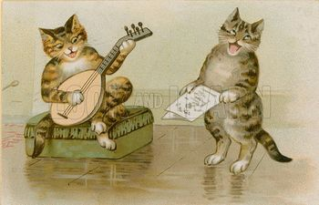 Cats making music