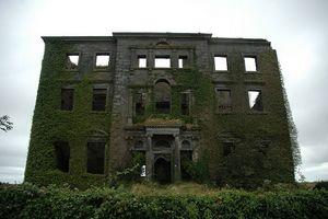 RuinedIrishMansionTyrone_Houseblog